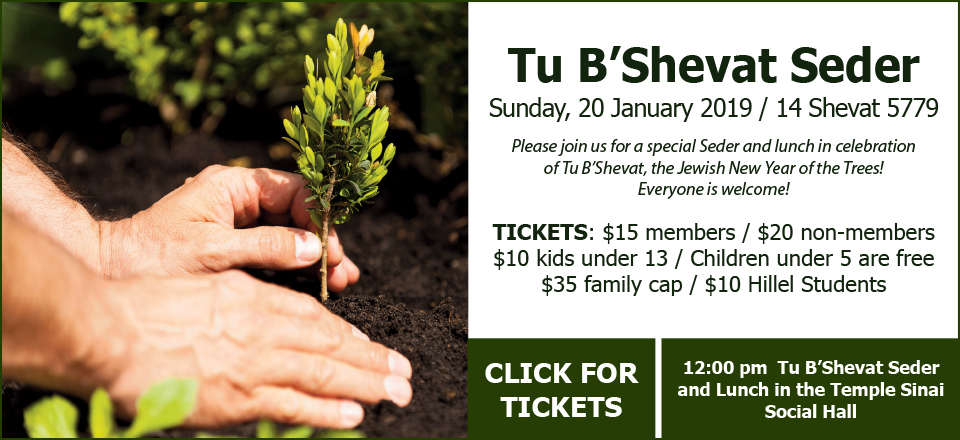Tu B'Shevat Seder on Sunday, 20 January 2019 / 14 Shevat 5779. 12:00 pm Tu B'Shevat Seder and Lunch in the Temple Sinai Social Hall. Please join us for a special Seder and lunch in celebration of Tu B'Shevat, the Jewish New Year of the Trees. Everyone is welcome! TICKETS: $15 members / $20 non-members / $10 kids under 13 / Children under 5 are free / $35 family cap / $10 Hillel Students. Click for tickets.